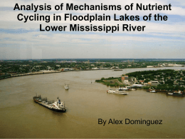 Analysis of Mechanisms of Nutrient Cycling in Floodplain Lakes of the