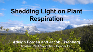 Shedding Light on Plant Respiration Atleigh Forden and Jacob Eisenberg