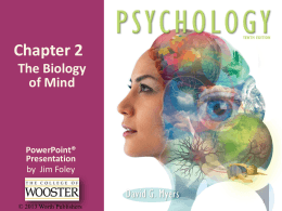 Chapter 2 The Biology of Mind PowerPoint®