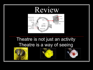 Review Theatre is not just an activity