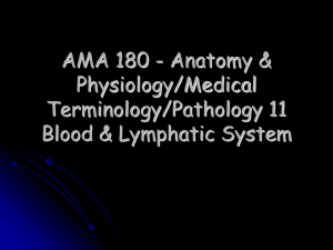 AMA 180 - Anatomy & Physiology/Medical Terminology/Pathology 11 Blood & Lymphatic System