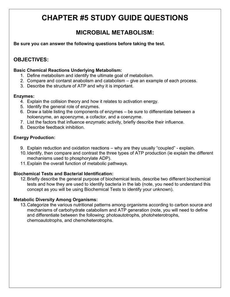 chap5 study guide ansersplus professional user manual ebooks u2022 rh gogradresumes com