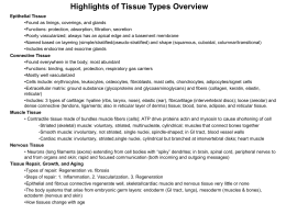 Highlights of Tissue Types Overview