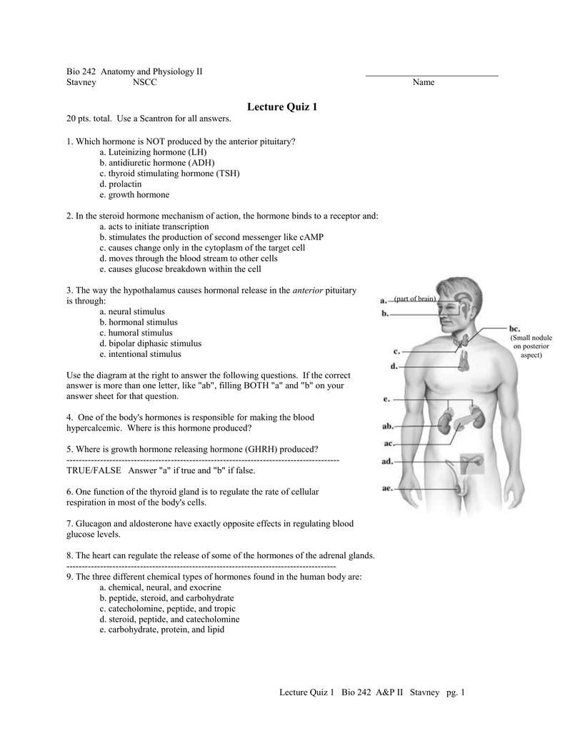 Lecture Quiz 1