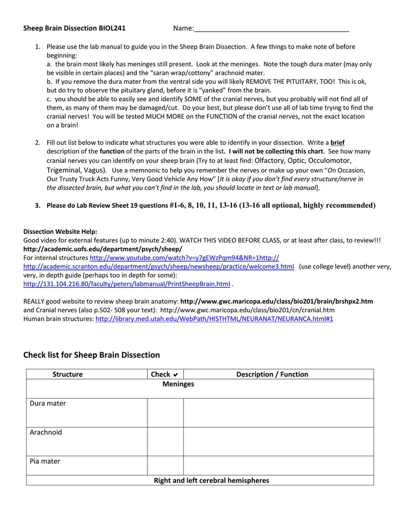 Useful Notes On Hypophysis Cerebri Manual Guide