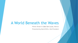 A World Beneath the Waves Cabo San Lucas
