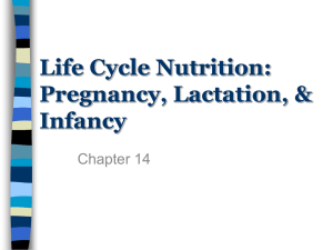 Life Cycle Nutrition: Pregnancy, Lactation, & Infancy Chapter 14