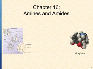 Chapter 16: Amines and Amides 1