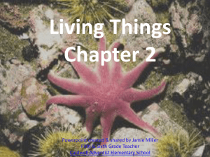 Living Things Chapter 2 Powerpoint created & shared by Jamie Miller