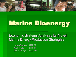 Marine Bioenergy Economic Systems Analyses for Novel Marine Energy Production Strategies MAT '09