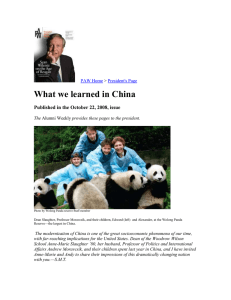 What we learned in China  PAW Home