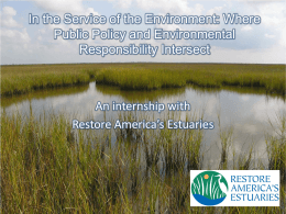 In the Service of the Environment: Where Public Policy and Environmental