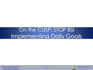 Implementing Daily Goals On the CUSP: STOP BSI © 2009