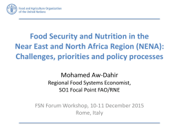 Food Security and Nutrition in the Challenges, priorities and policy processes