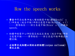How the speech works