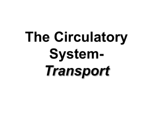 The Circulatory System- Transport