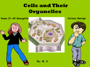 Cells and Their Organelles Curious George Know-It-All Georgette