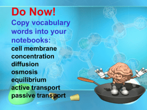 Do Now! Copy vocabulary words into your notebooks: