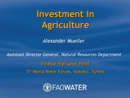 Investment in Agriculture Alexander Mueller Assistant Director General, Natural Resources Department