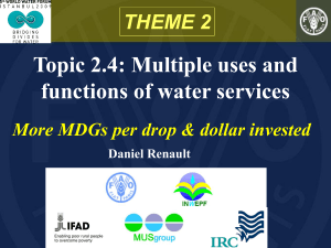 Topic 2.4: Multiple uses and functions of water services THEME 2