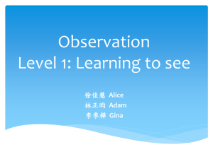 Observation Level 1: Learning to see Alice Adam