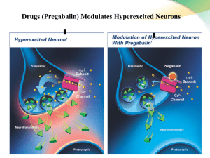Drugs (Pregabalin) Modulates Hyperexcited Neurons *Does not affect Ca ++
