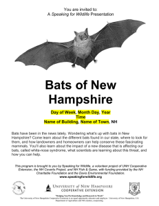 Bats of New Hampshire You are invited to: