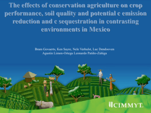 The effects of conservation agriculture on crop