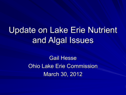 Update on Lake Erie Nutrient and Algal Issues Gail Hesse