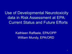 Use of Developmental Neurotoxicity data in Risk Assessment at EPA: