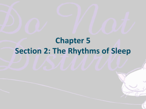 Chapter 5 Section 2: The Rhythms of Sleep