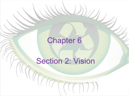 Chapter 6 Section 2: Vision