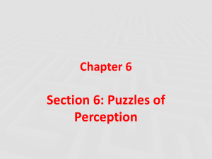 Section 6: Puzzles of Perception Chapter 6