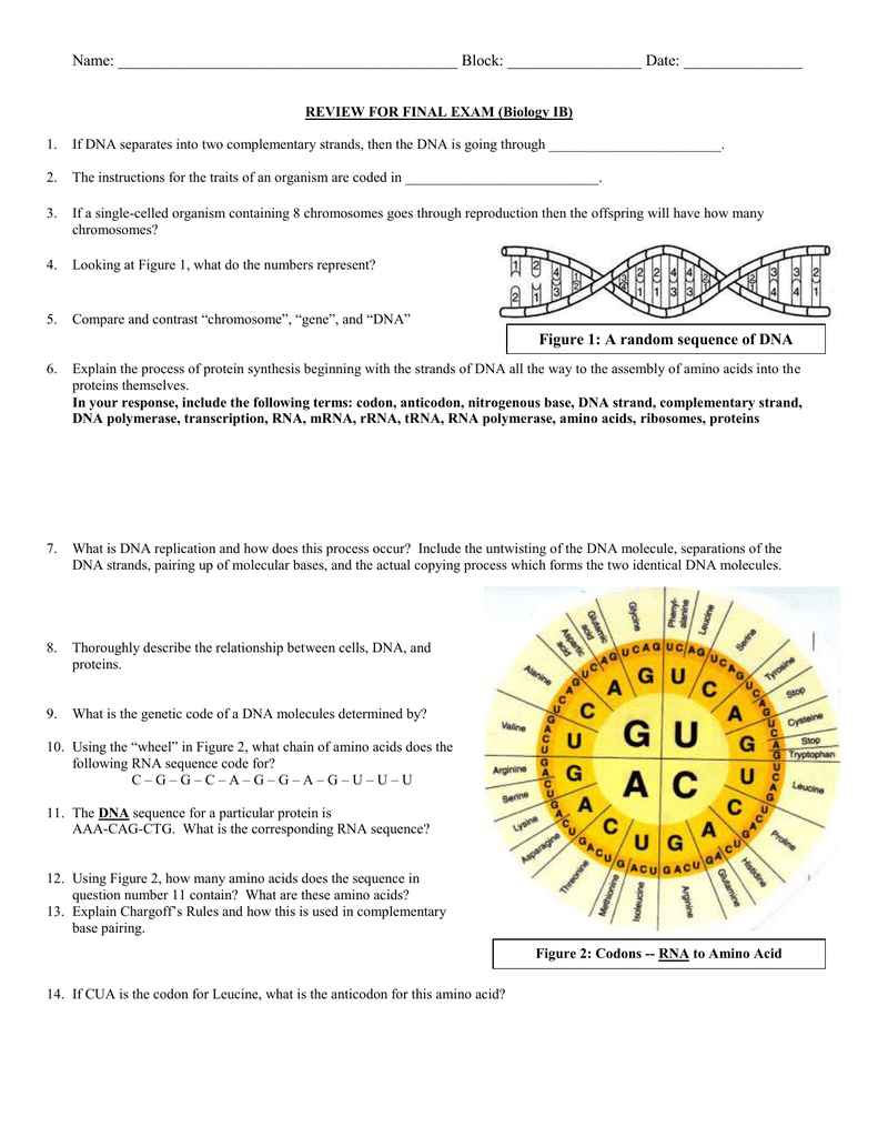 Fact and opinion worksheets 3rd grade pdf