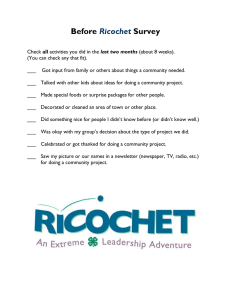 Before Survey Ricochet