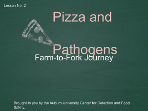Pizza and Pathogens Farm-to-Fork Journey Lesson No. 2