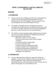 REPORT TO ENVIRONMENTAL SCRUTINY COMMITTEE 22nd April 2003  DRAINAGE