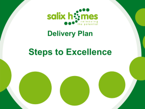Steps to Excellence Delivery Plan