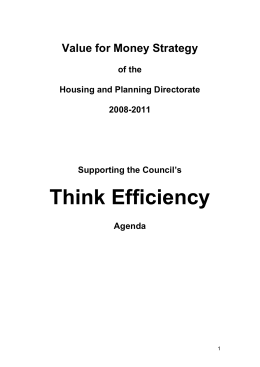 Think Efficiency Value for Money Strategy  of the