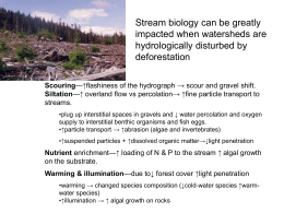 Stream biology can be greatly impacted when watersheds are hydrologically disturbed by deforestation