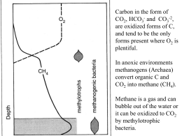 Carbon in the form of CO , HCO and  CO