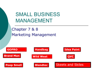SMALL BUSINESS MANAGEMENT Chapter 7 & 8 Marketing Management