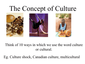 The Concept of Culture