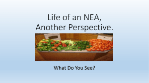 Life of an NEA, Another Perspective. What Do You See?