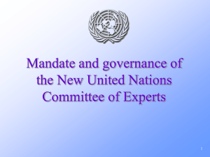 Mandate and governance of the New United Nations Committee of Experts 1