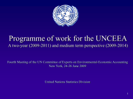Programme of work for the UNCEEA