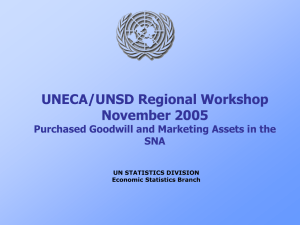UNECA/UNSD Regional Workshop November 2005 Purchased Goodwill and Marketing Assets in the SNA