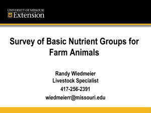 Survey of Basic Nutrient Groups for Farm Animals Randy Wiedmeier Livestock Specialist