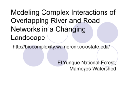Modeling Complex Interactions of Overlapping River and Road Networks in a Changing Landscape