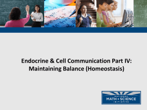 Endocrine & Cell Communication Part IV: Maintaining Balance (Homeostasis)